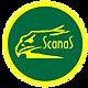 SCANAS-LOGO-KUNING-Hijau.png