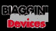 logo-biaggini.png