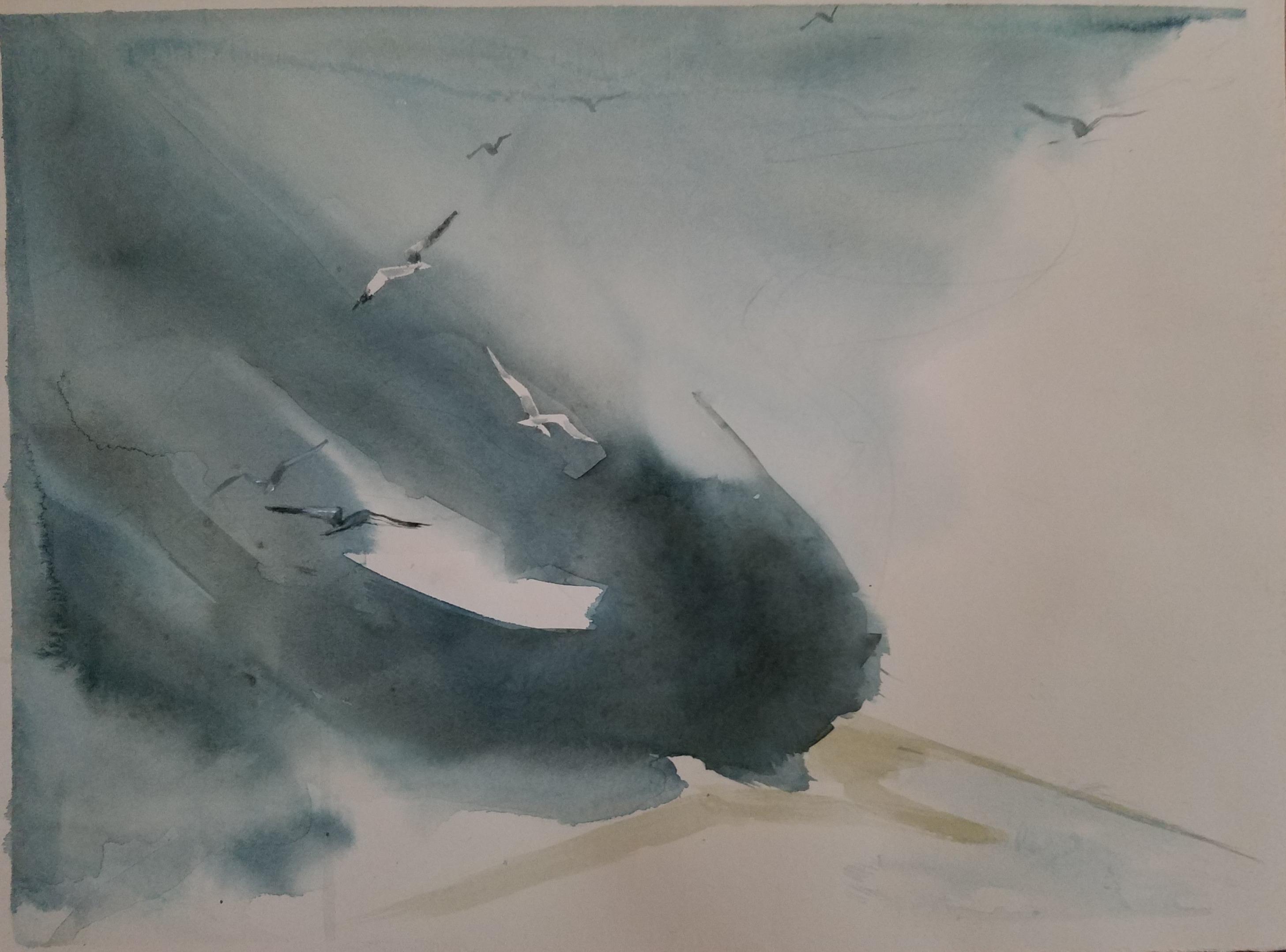 Gulls in the spray