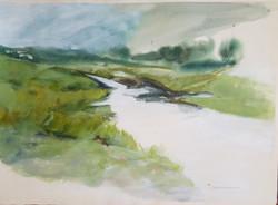 3) Estuary