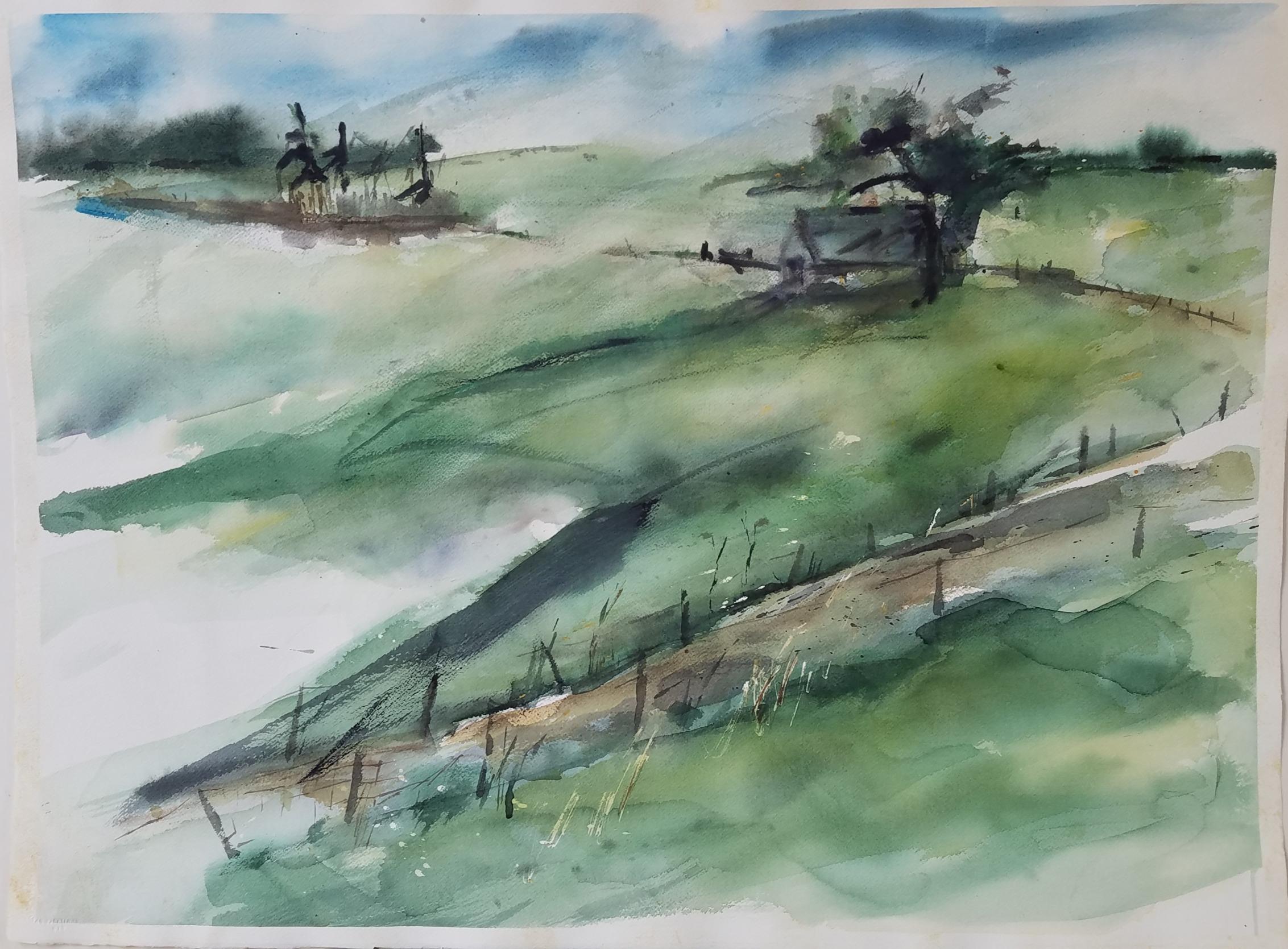 24) Vermont Fields
