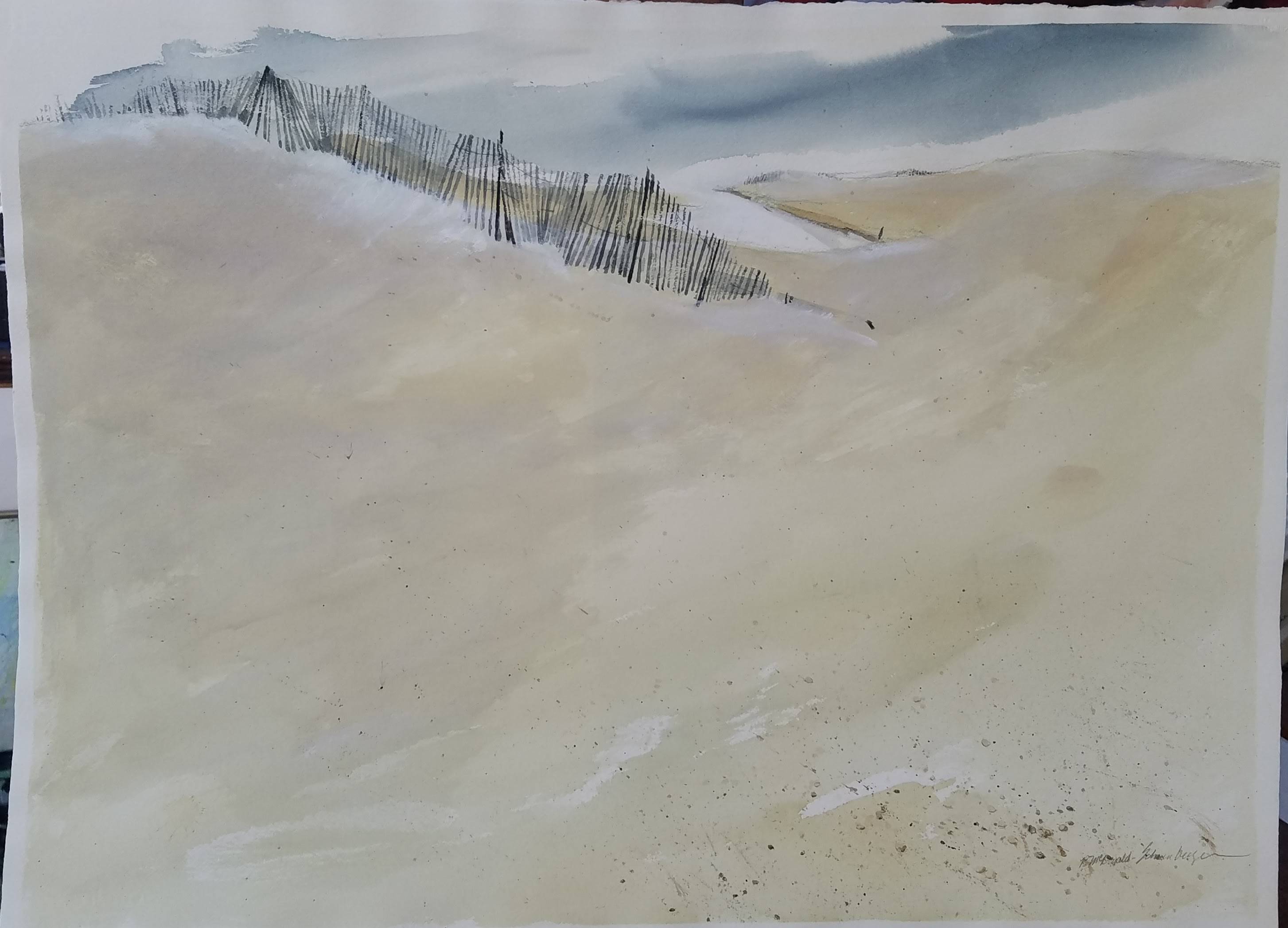 9) Dune Fence