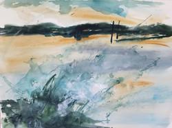 15) Windswept