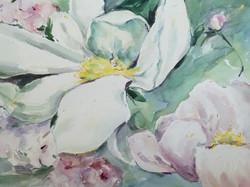 28) Granda Flora