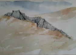 14) Dune Fence
