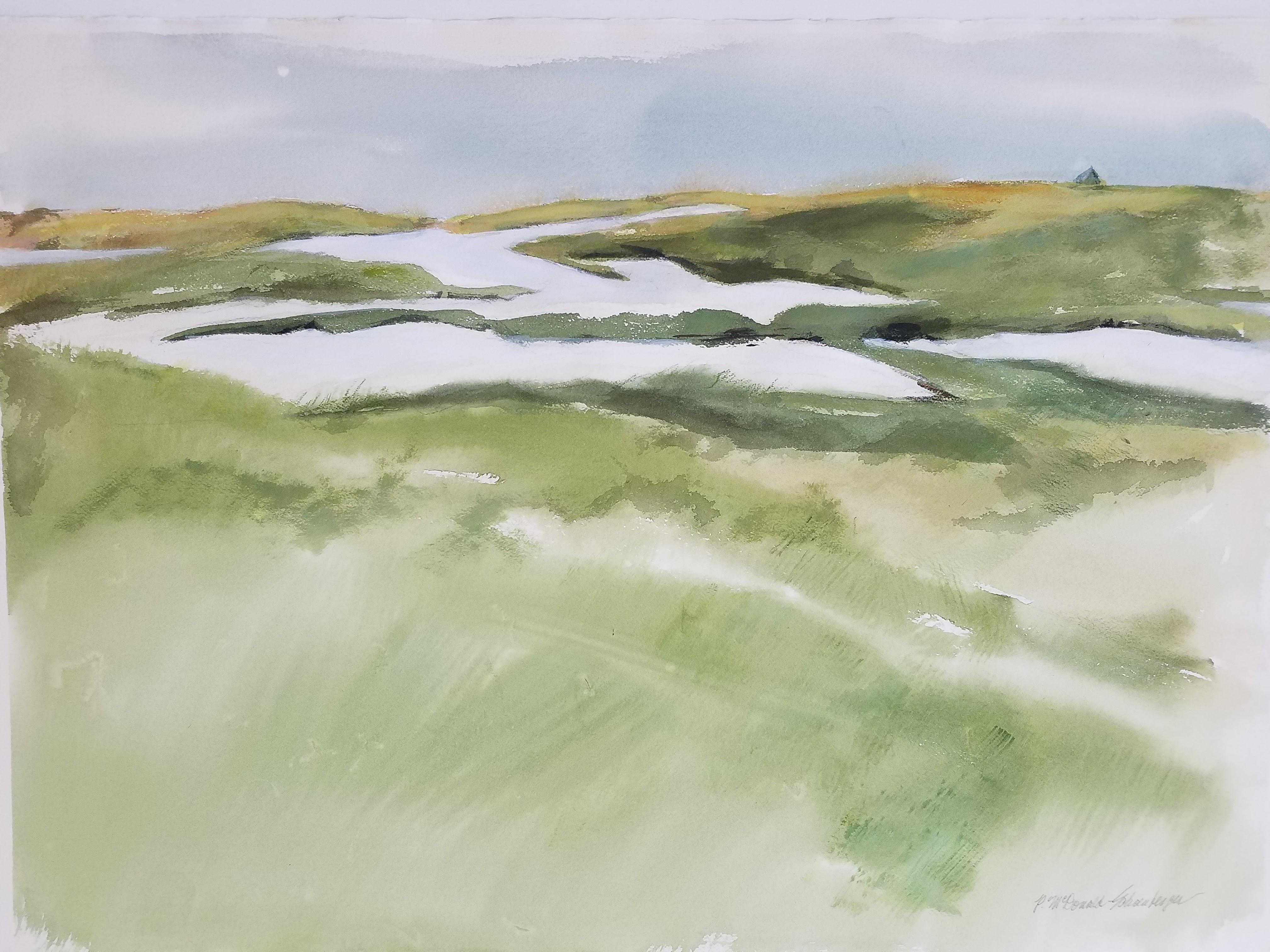 Salt Marsh Vista