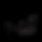 logo BVSC.png