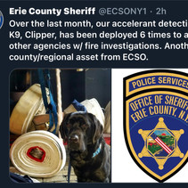 Erie Co Sheriff's Office K9 Clipper Assists Outside Agencies.