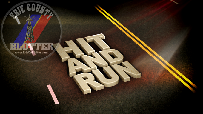 SHERIFFS INVESTIGATING CLARENCE HIT AND RUN