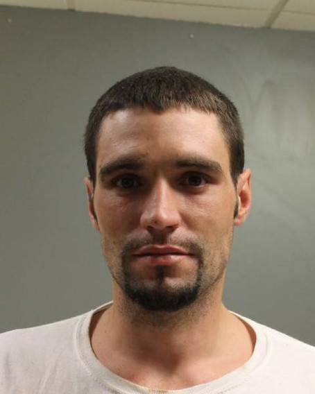 Fleeing Subject Charged with Grand Larceny and 4 Other Charges After North Collins Search.
