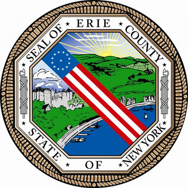 POLONCARZ APPOINTS MICHEL, JR. COMMISSIONER OF ERIE COUNTY CENTRAL POLICE SERVICES