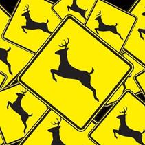 Operators Beware: It's Deer Collision Season Again.