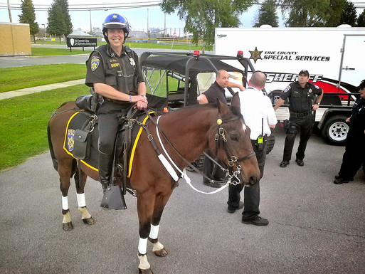 """Erie Co Sheriffs Mounted Unit Loses Long Serving Horse. """"Jake"""" Was a Fixture at Many Commu"""