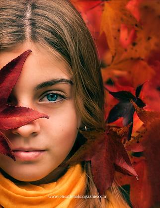 62 - autumn_fall