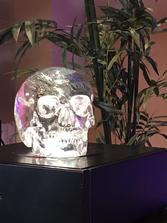 Mitchell-Hedges Skull