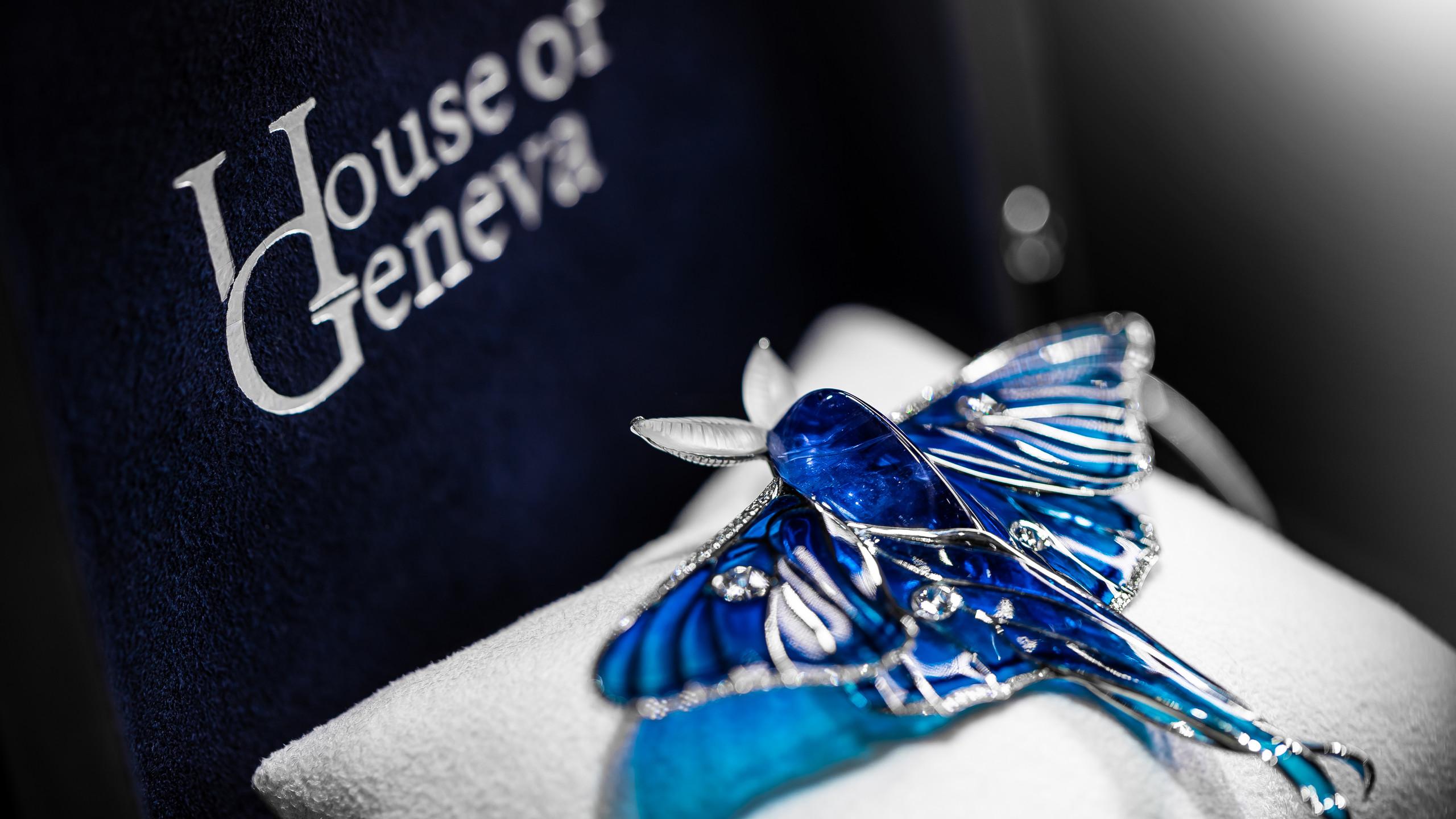 Blue Isabellae