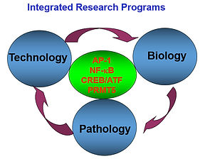 IntegratedResearchPrograms.jpg