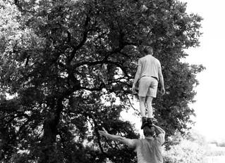 Acrobates et danseurs sur le Sentier de l'imaginaire à Murols le 7 août 16h30