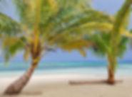 San Blas beach white sand