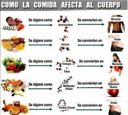 comida y cuerpo.jpg