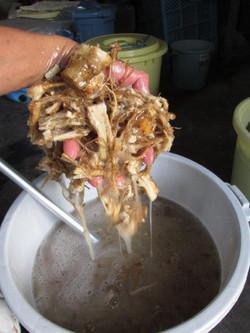 20. 潰した根に水を加えて撹拌すると、粘り気が出ます。