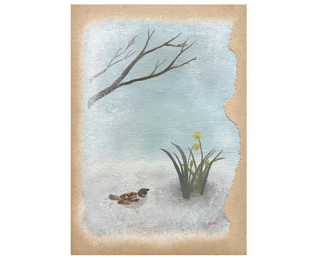 雪中花/渡りの夜から冬の終わり