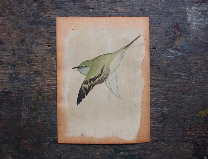 琳派の鳥(細見美術館オリジナルカード)
