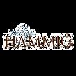 Logo Hammig Transpartente.png
