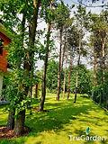 Ogród w stylu leśnym - trawnik -zakładanie i pielęgnacja ogrodów - Tru Garden Wiązowna