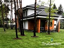 Trawnik w stylu leśnym - zakładanie i pielęgnacja ogrodów - Tru Garden Wiązowna
