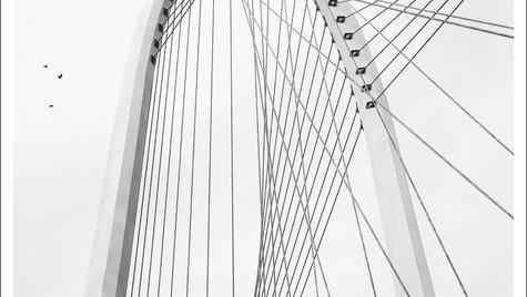Reggio Emilia_1_ponte Calatrava_pilone_d