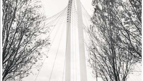 Reggio Emilia_1_ponte Calatrava_pilone_a