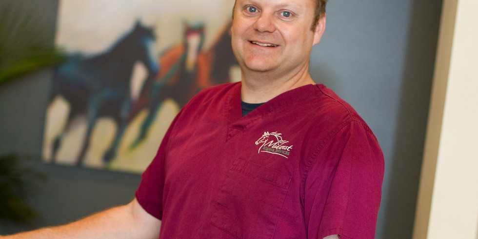 What every practitioner should know and understand about Equine Dentistry