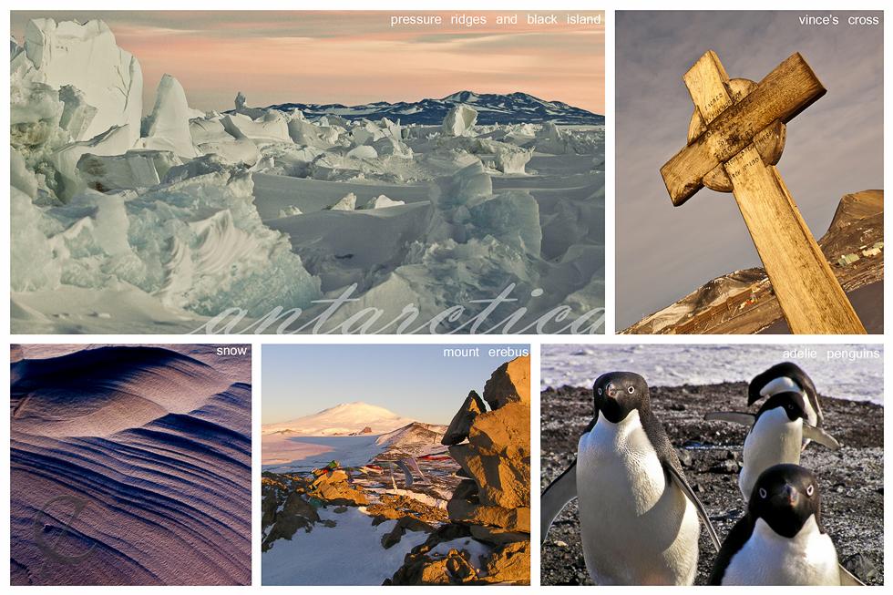 Antarctica Collage 1
