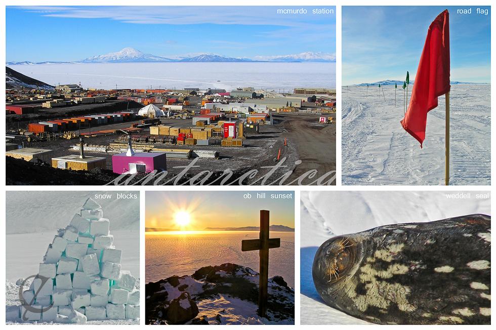 Antarctica Collage 2