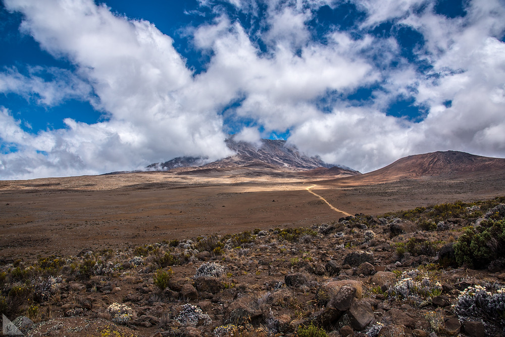 Hiking through Kilimanjaro's alpine desert climate zone between Kibo and Mawenzi cones.