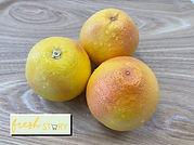 Fresh Star Ruby Grapefruit.jpg