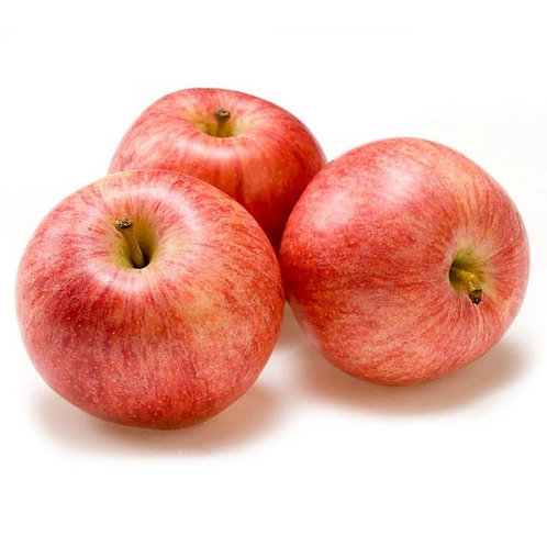 New Zealand Royal Gala Apple (5pcs)