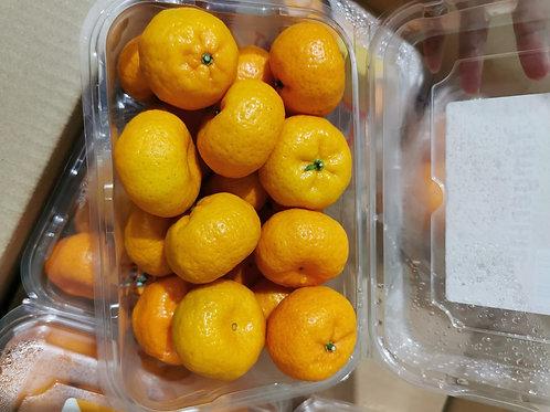 China Sugar Tangerine(800g)