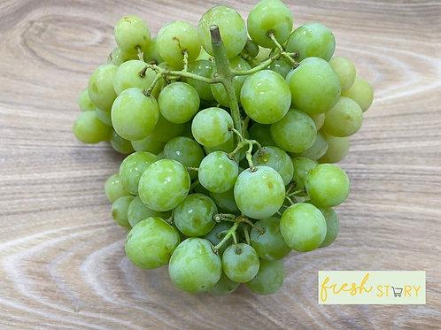 Aust Autumn Crisp Green SL Grapes (500g)