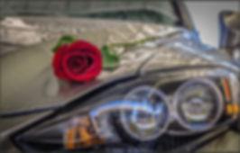 Rose on Hood_edited.jpg