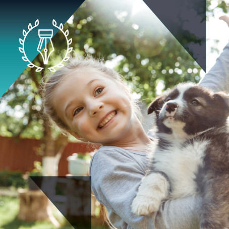 LET'S TALK Pets and sectional title schemes: what does the law say?