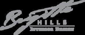 brigittehills_logo.png
