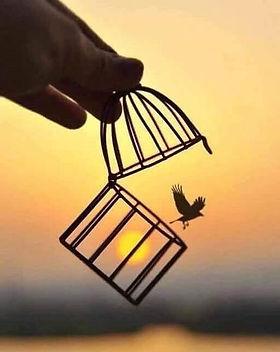 soltar pájaro.jpg