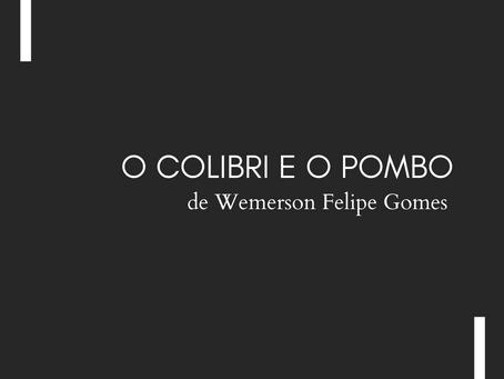 O COLIBRI E O POMBO, de Wemerson Felipe Gomes