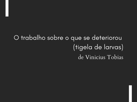 O trabalho sobre o que se deteriorou (tigela de larvas), de Vinicius Tobias