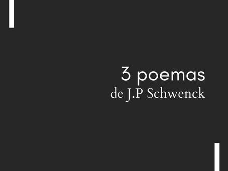"""""""Demônio da Pinacoteca"""", """"Bahia Submersa"""" e """"O Olho e a Tinta"""", de J.P Schwenck"""