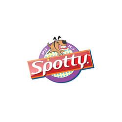 spottypad_logo