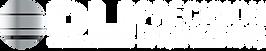 DLI Eng Ltd white logo.png