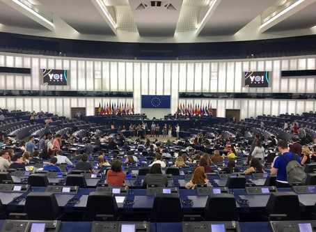 The Youth and the European Union (EU): The Promotion of and Access to Information